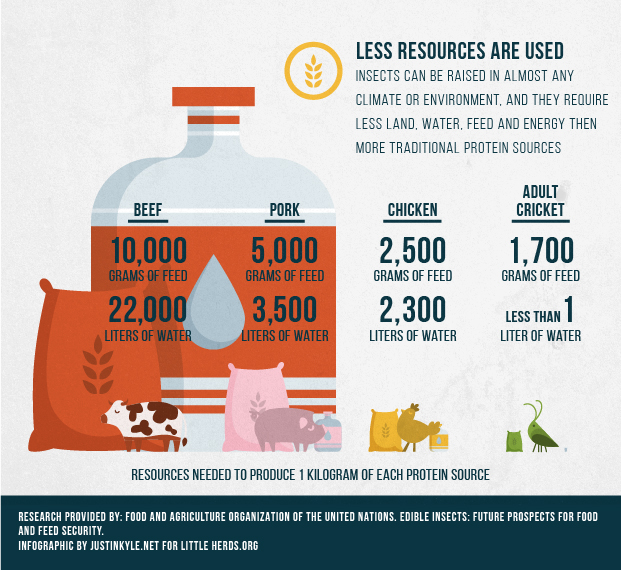 LH Feed&H2O Infographic